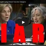 Vaccine Fraud
